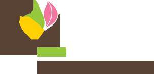 Toitumisnõustamine- tervislik toitumine on oskus kogu eluks